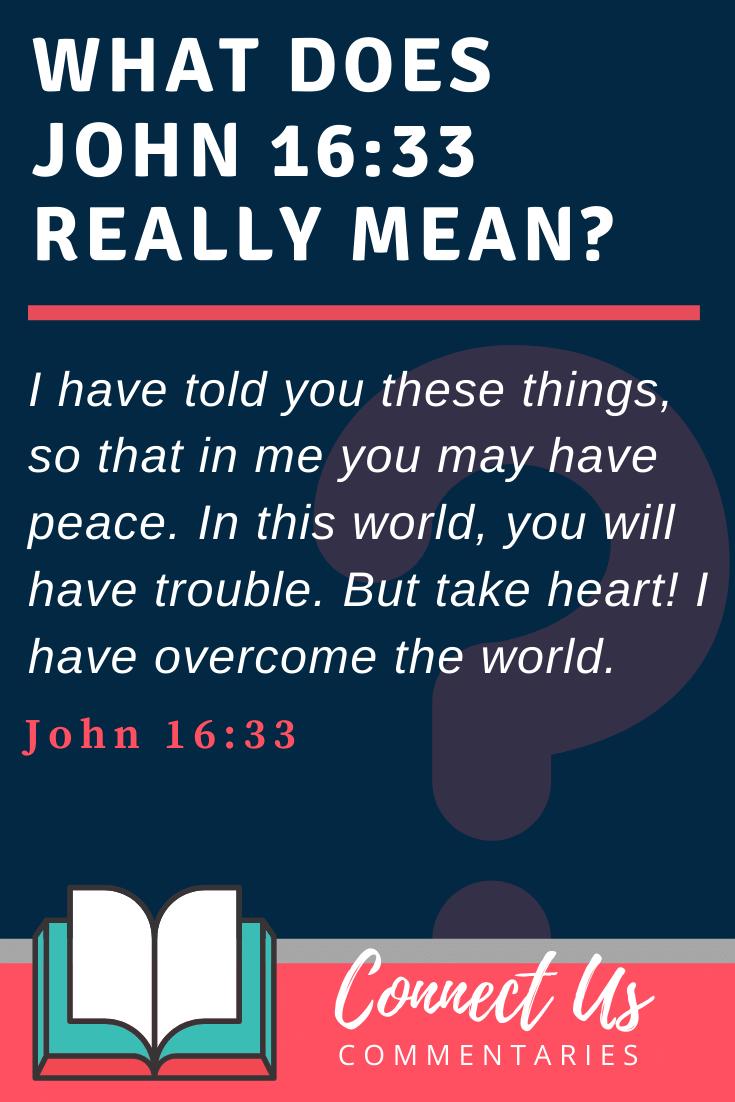 John 16:33 Meaning