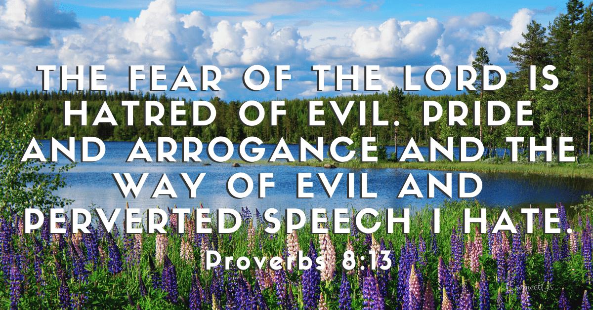 Proverbs 8:13