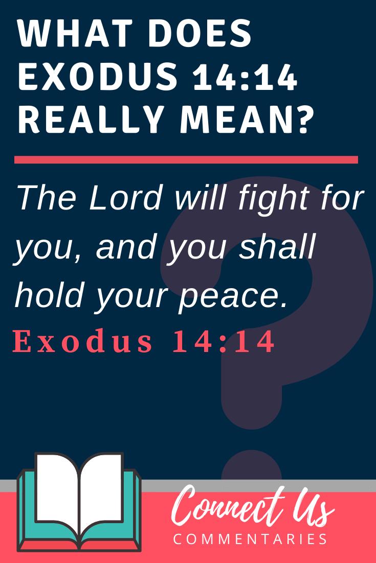 Exodus 14:14 Meaning