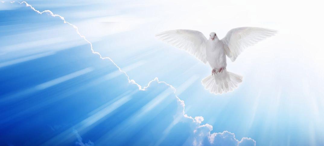 miracle-of-prayer