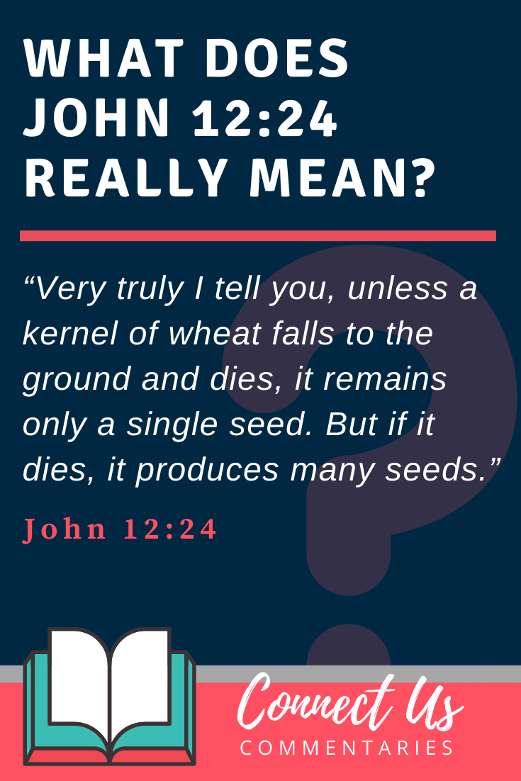 John 12:24 Meaning and Commentary