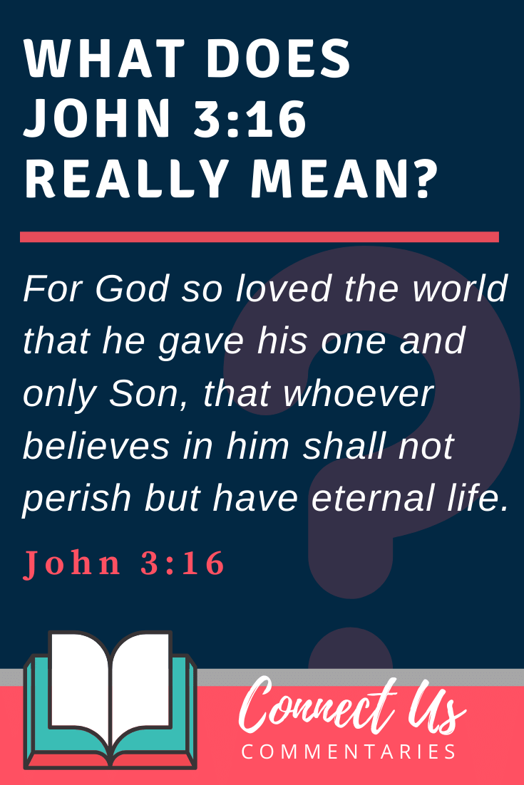 John 3:16 Meaning and Commentary