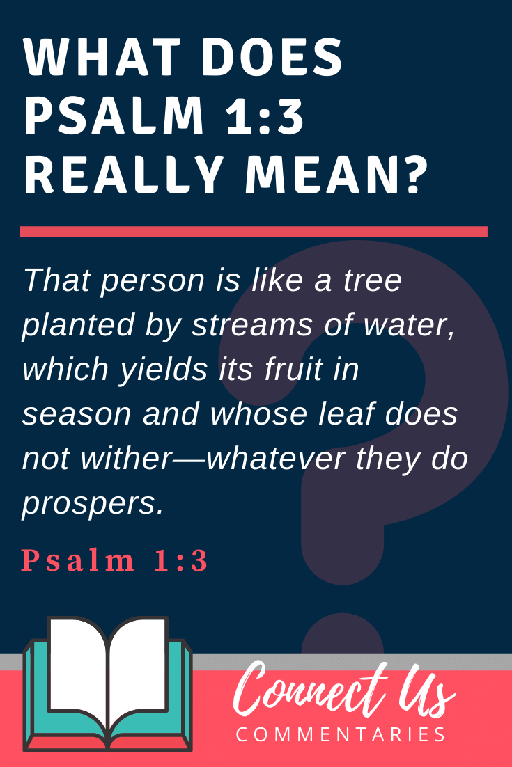 Psalm 1:3 Meaning and Commentary
