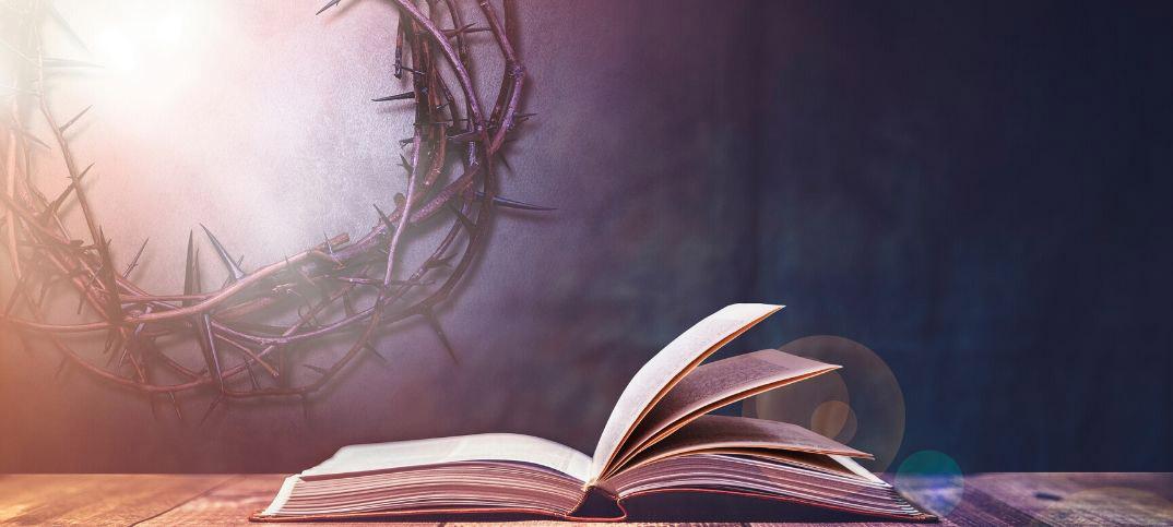 Bible Scriptures on Renewal