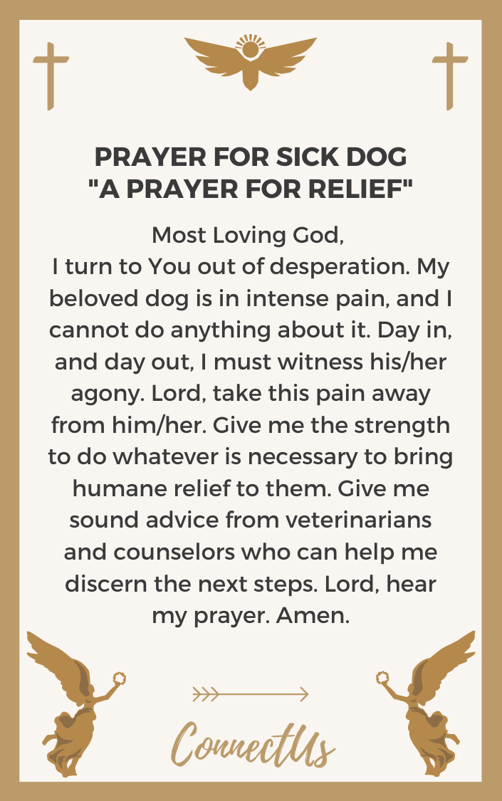 a-prayer-for-relief