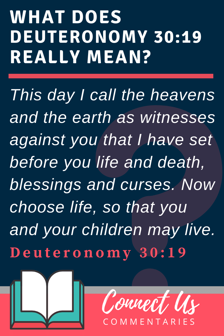 Deuteronomy 30:19 Meaning and Commentary