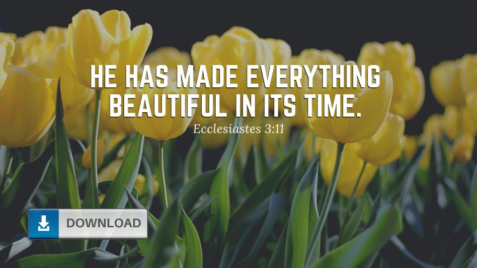 Ecclesiastes 3:11 Wallpaper