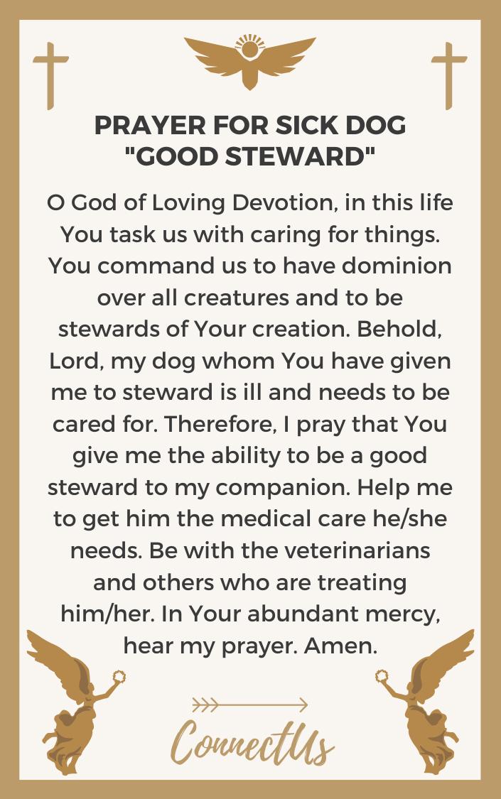 good-steward