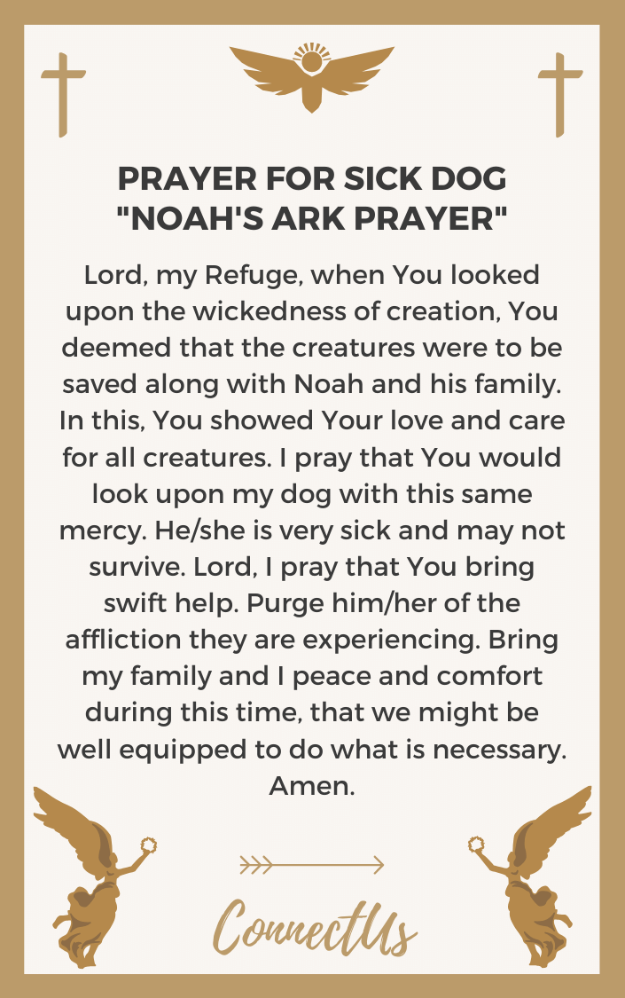 noahs-ark-prayer