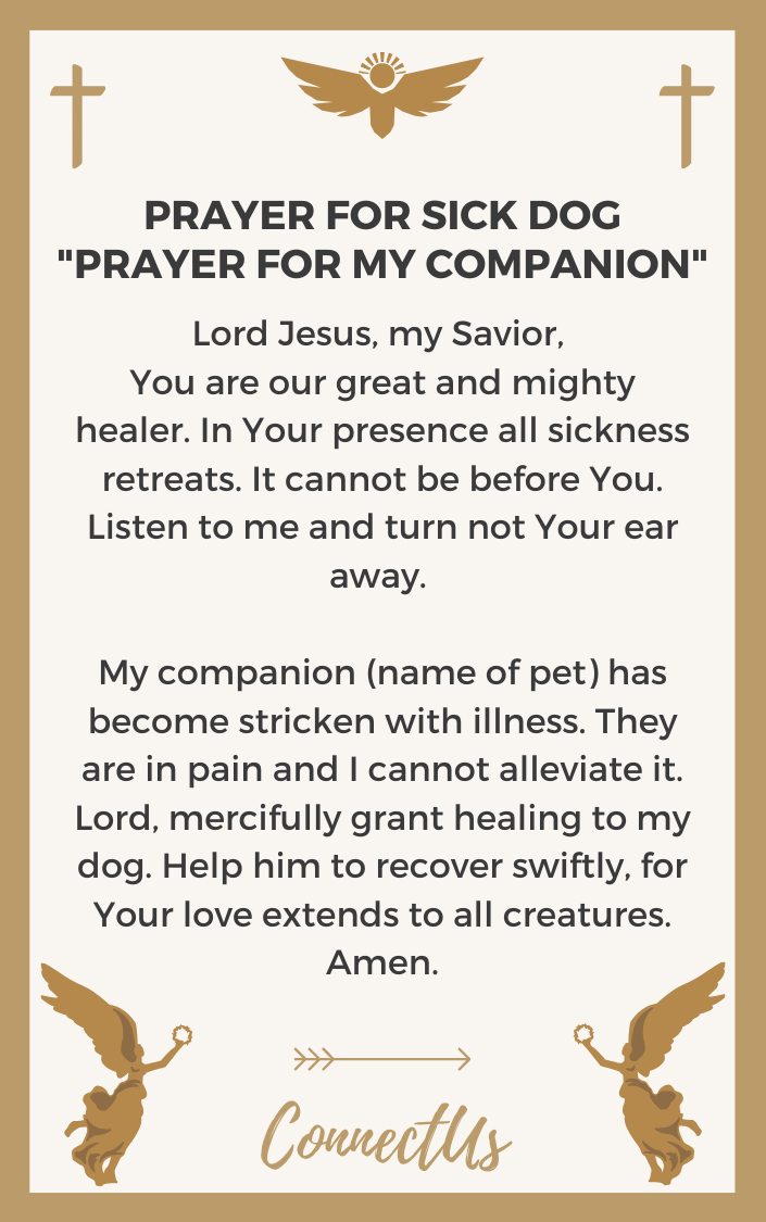 prayer-for-my-companion
