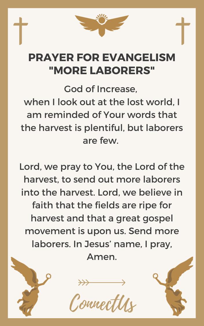 more-laborers
