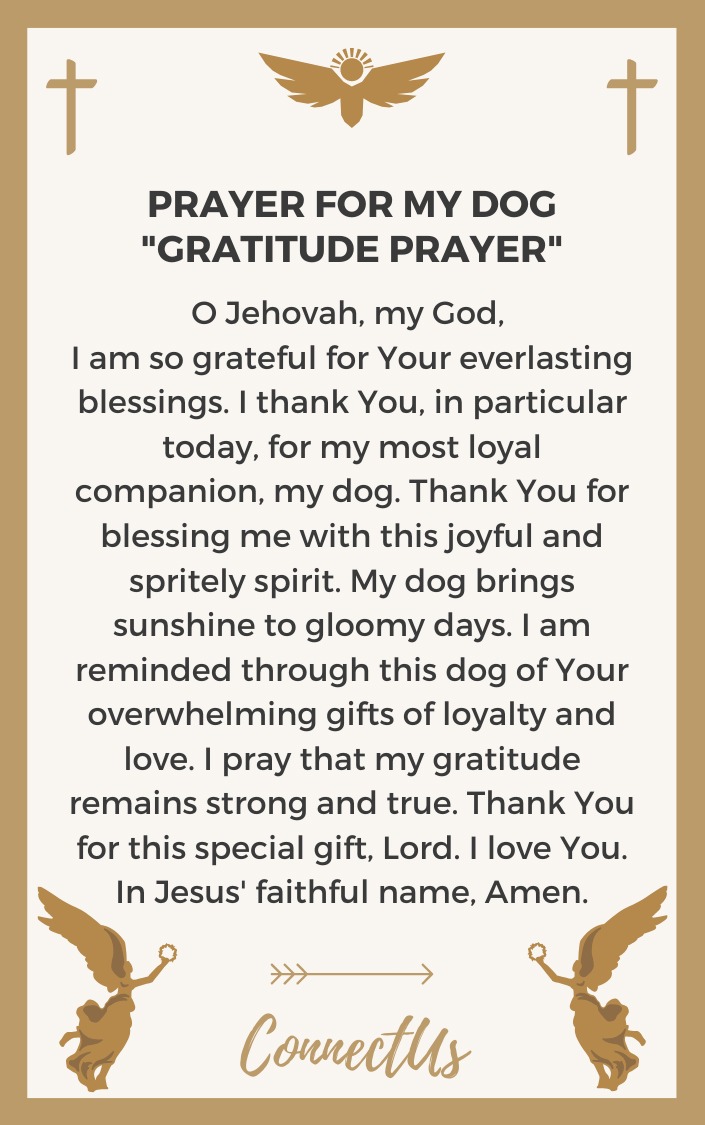 gratitude-prayer
