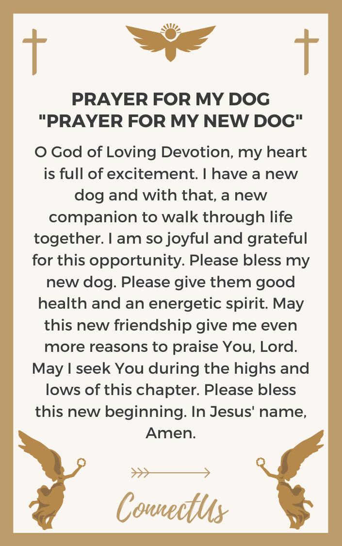prayer-for-my-new-dog