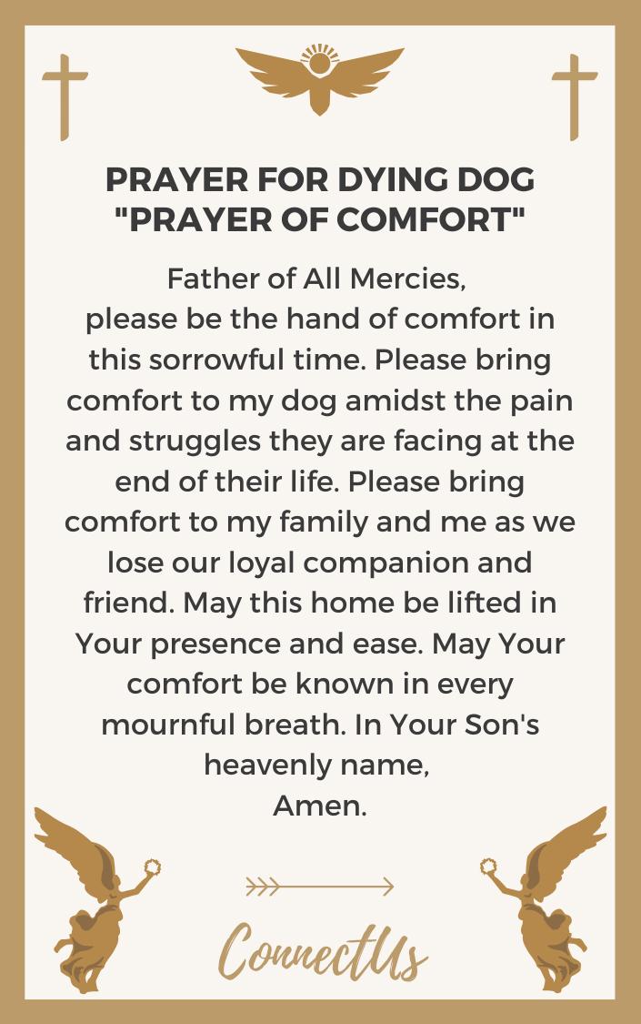 prayer-of-comfort