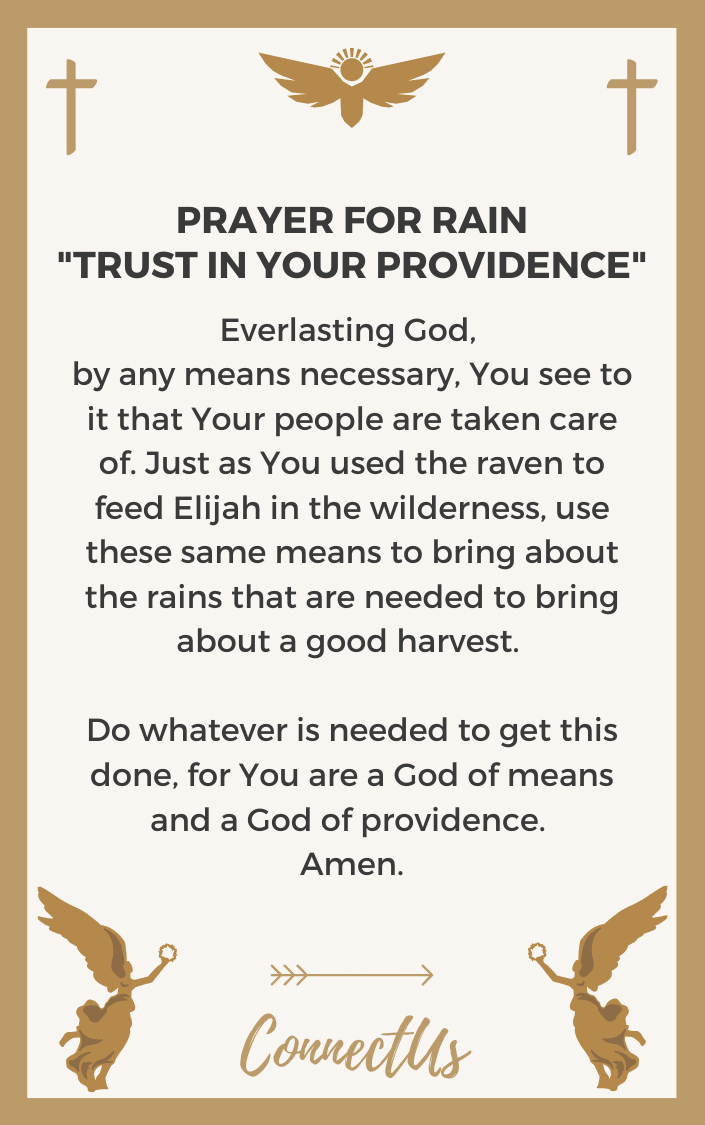 trust-in-your-providence